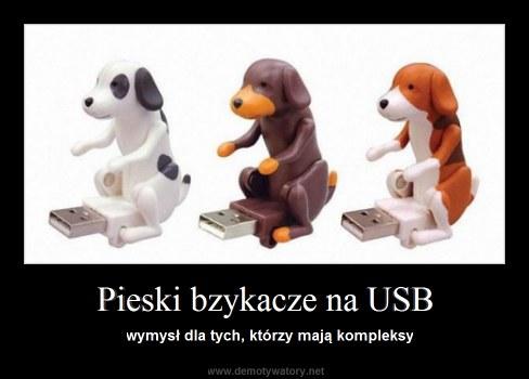 Pieski bzykacze na USB - wymysł dla tych, którzy mają kompleksy