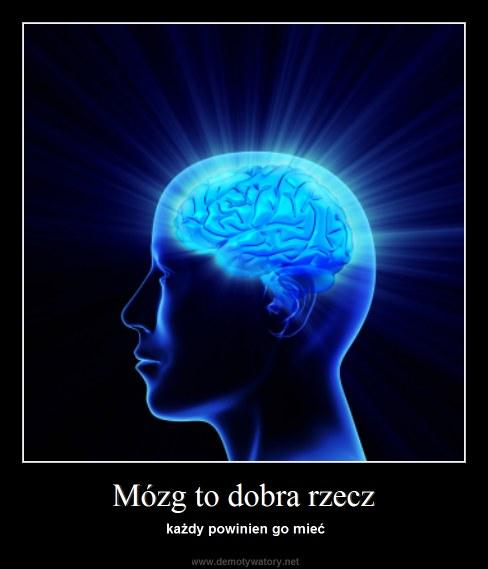 Mózg to dobra rzecz - każdy powinien go mieć