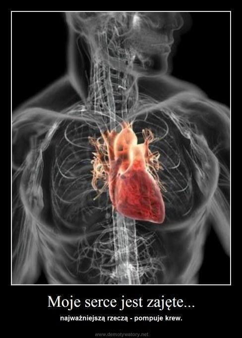 Moje serce jest zajęte... - najważniejszą rzeczą - pompuje krew.
