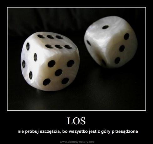 LOS - nie próbuj szczęścia, bo wszystko jest z góry przesądzone
