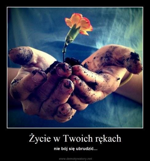 Życie w Twoich rękach - nie bój się ubrudzić...