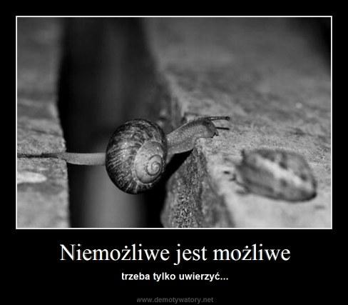 Niemożliwe jest możliwe - trzeba tylko uwierzyć...