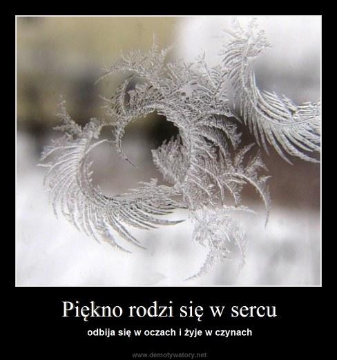 Piękno rodzi się w sercu - odbija się w oczach i żyje w czynach