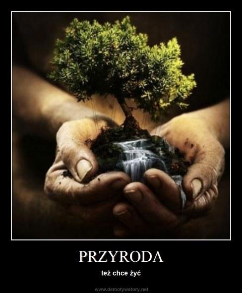 PRZYRODA - też chce żyć