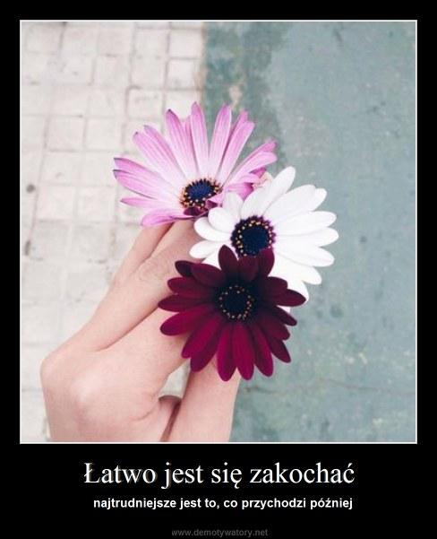 Łatwo jest się zakochać - najtrudniejsze jest to, co przychodzi później