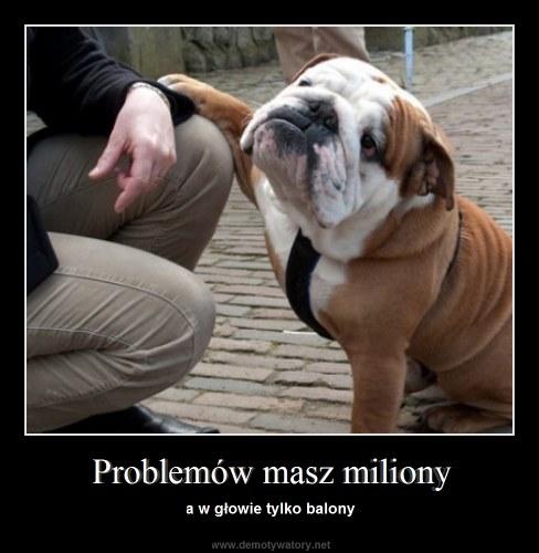 Problemów masz miliony - a w głowie tylko balony