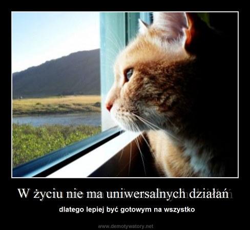 W życiu nie ma uniwersalnych działań - dlatego lepiej być gotowym na wszystko