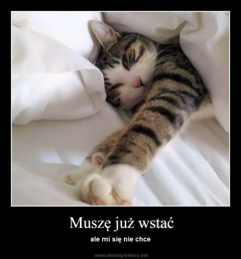 Muszę już wstać - ale mi się nie chce