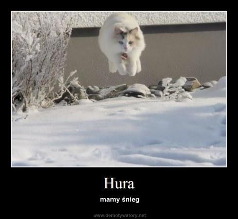 Hura - mamy śnieg