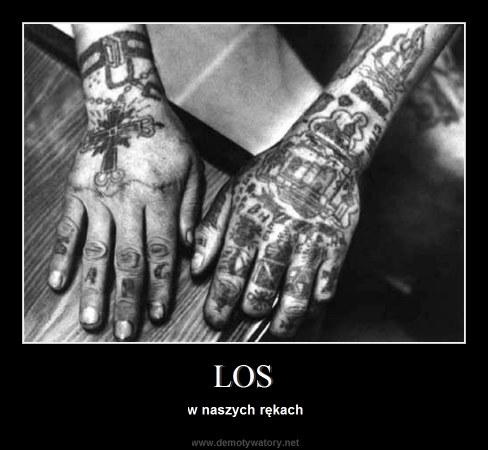LOS - w naszych rękach